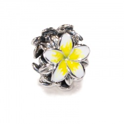 Frangipani Yellow & White
